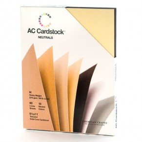 Набор картона Neutrals Cardstock Variety Packs, А4, 10 листов, American Crafts, 71266