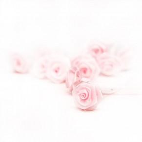 Букет роз Ribbon Rose, Light Pink, 12 шт, B1155WH