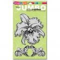 Штамп резиновый Jumbo Orchid, 2 шт, Stampendous, CRS5032