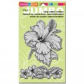 Штампы Tropical Garden, Stampendous, CRS5035