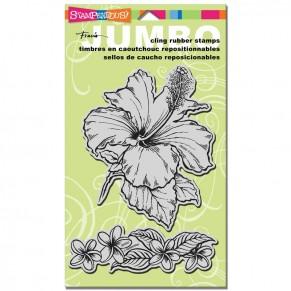 Штампы Tropical Garden, Stampendous, CRS5035